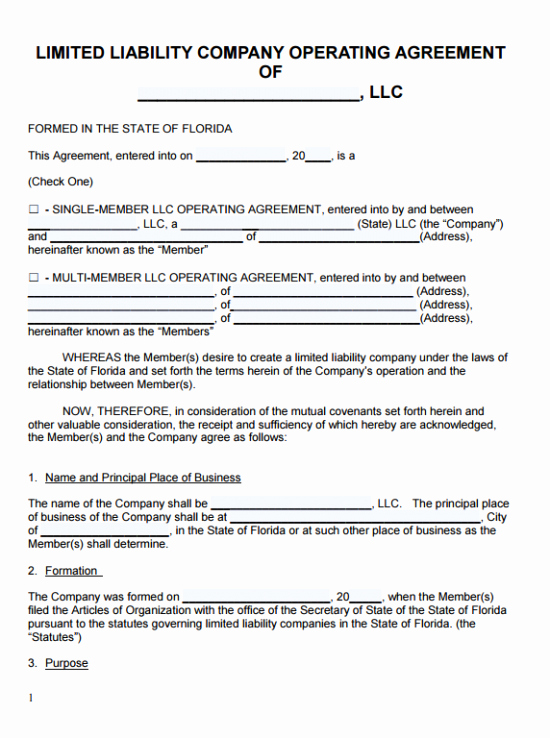 Free Florida Llc Operating Agreement Template Pdf