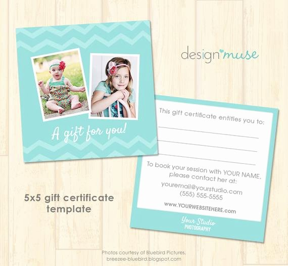 Free Graphy Gift Certificate Template Psd