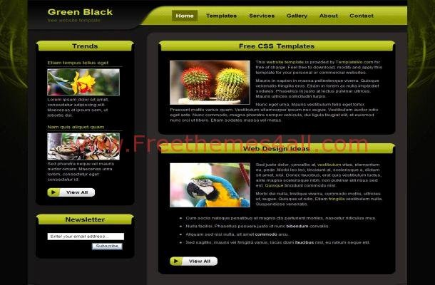 Free HTML Dark Black Green Css Website Template