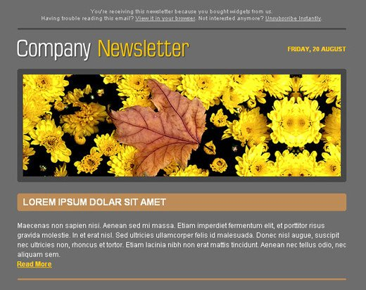 Free HTML Newsletter Templates Noupe