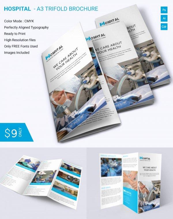 Free Indesign Tri Fold Brochure Templates Csoforumfo