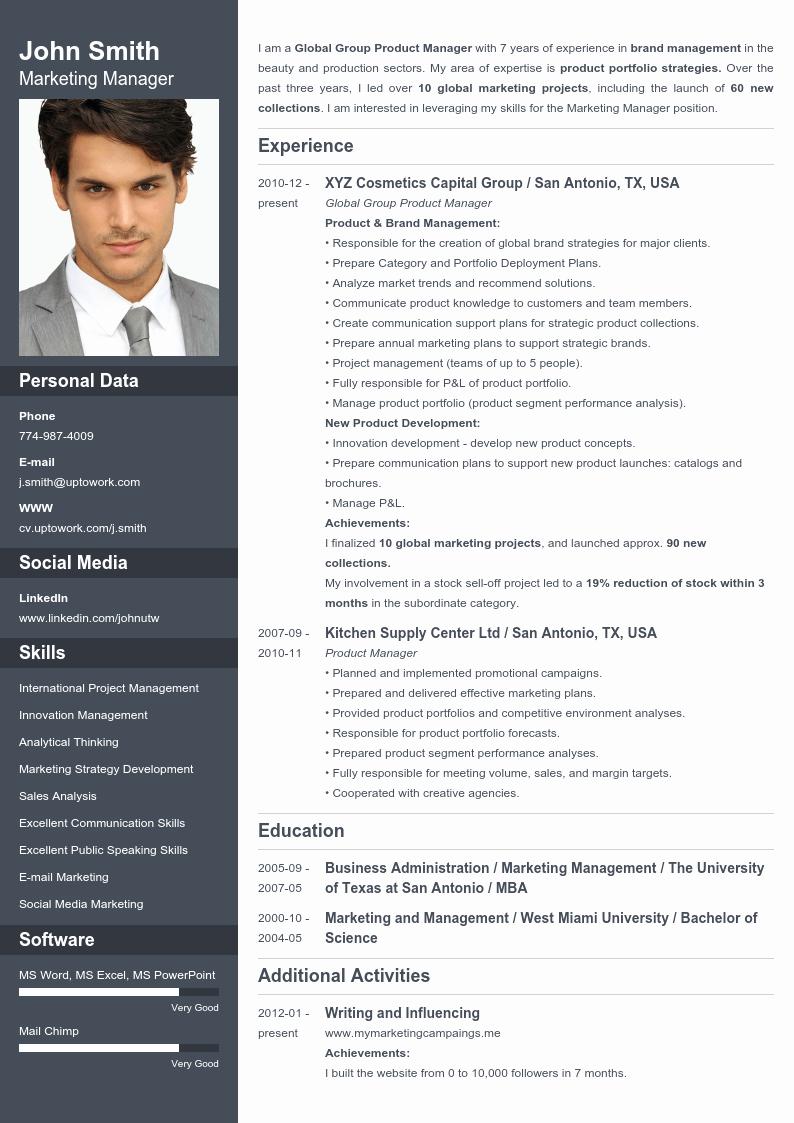 Free Line Resume Templates Cv Maker Professional
