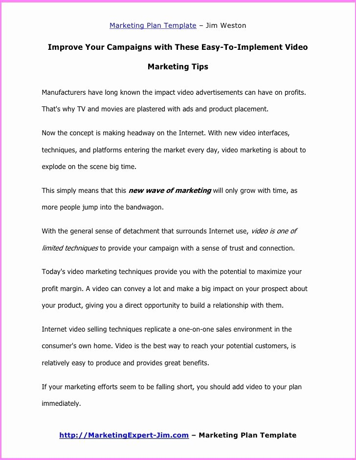 Free Marketing Plan Template Word