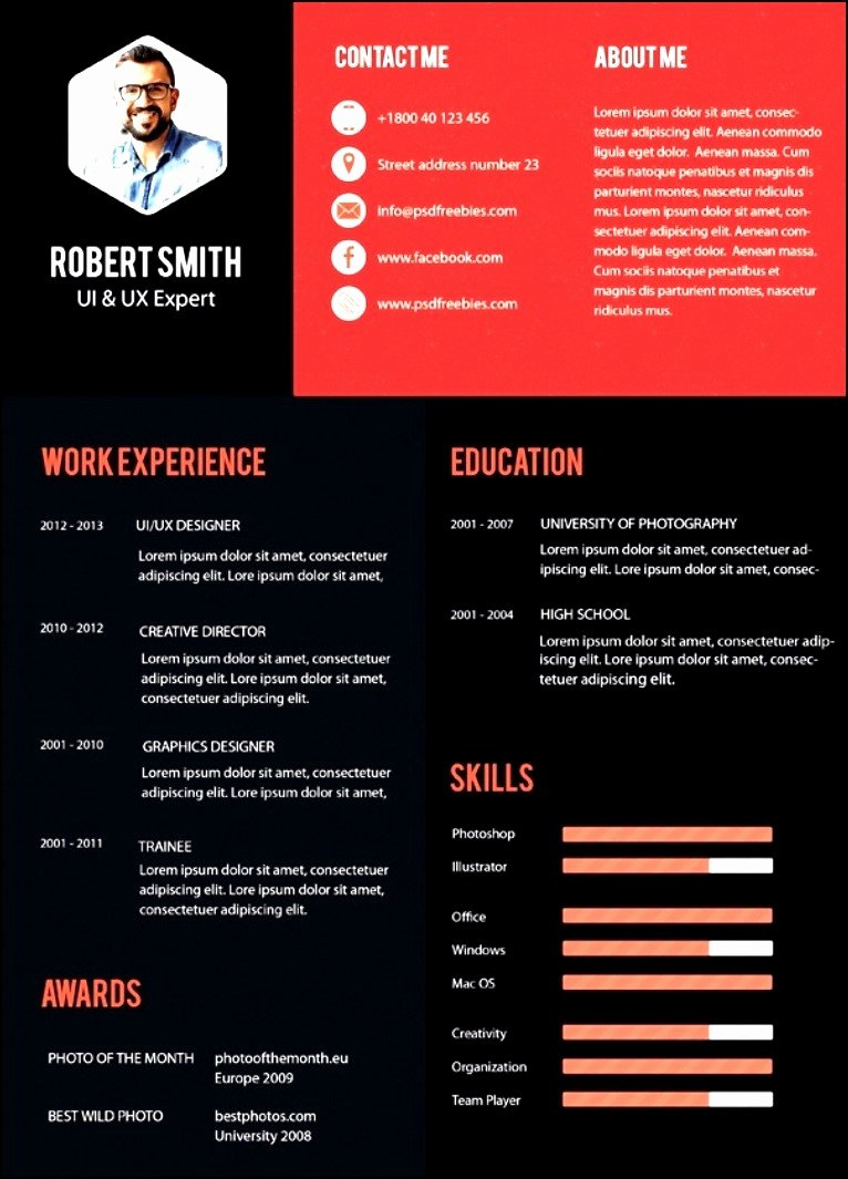 Free Modern Resume Templates 2016 Free Samples