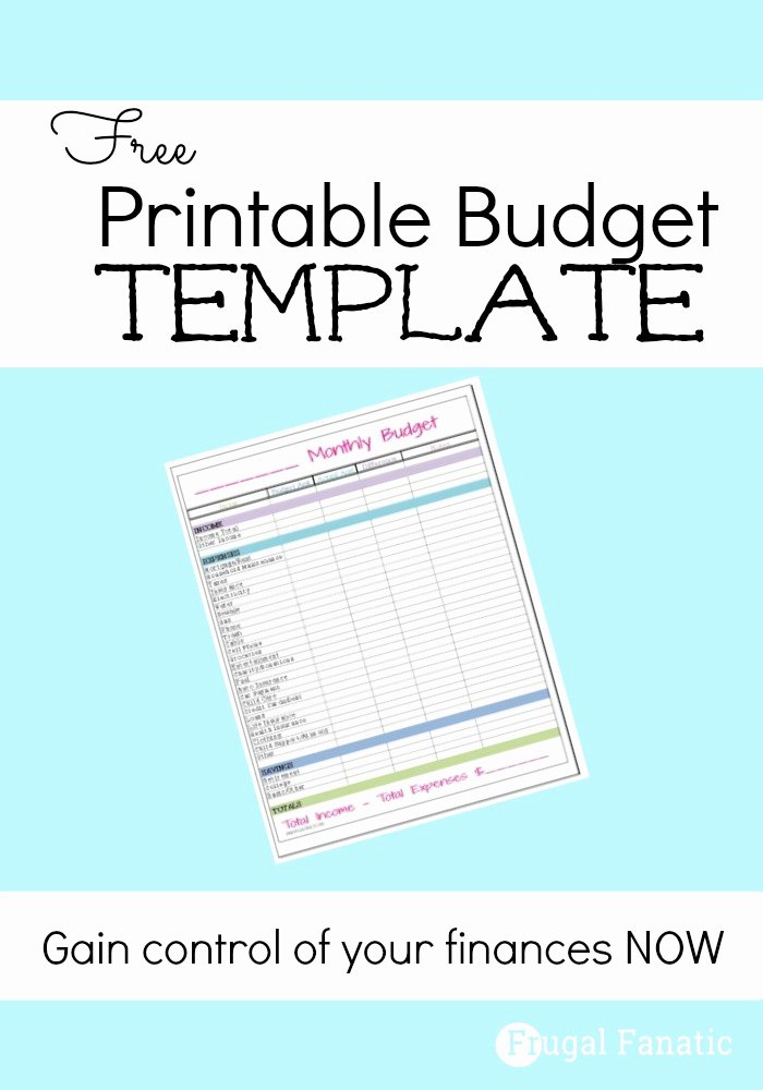 Free Monthly Bud Template Frugal Fanatic