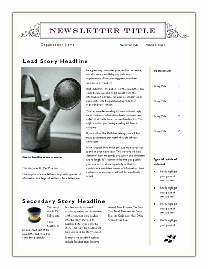 Free Newsletter Template for Word 2007 and Later