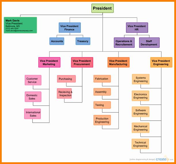 Free organizational Chart Create Professional Looking