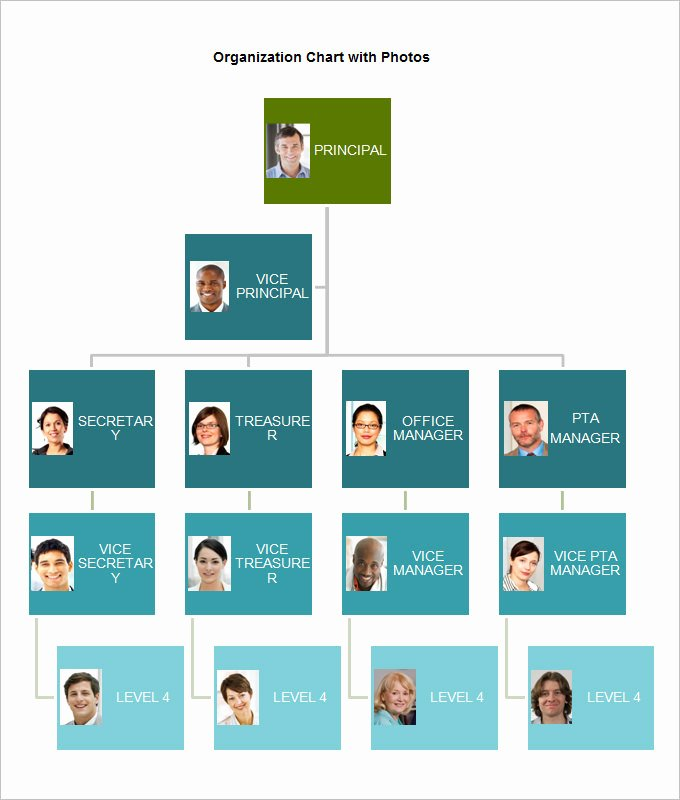 Free organizational Chart Template 5 Word Pdf Documents