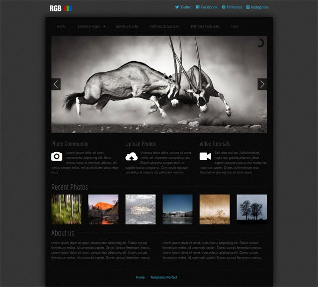 Free Photo Gallery Css Web Template