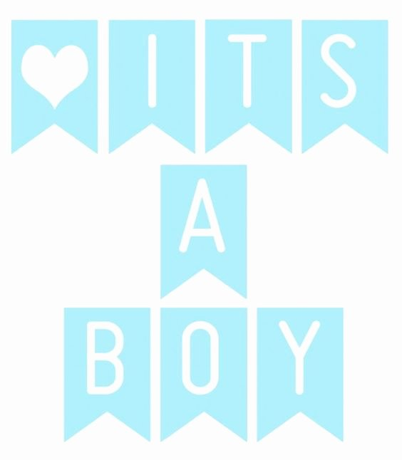 Free Printable Banner 'it's A Boy'