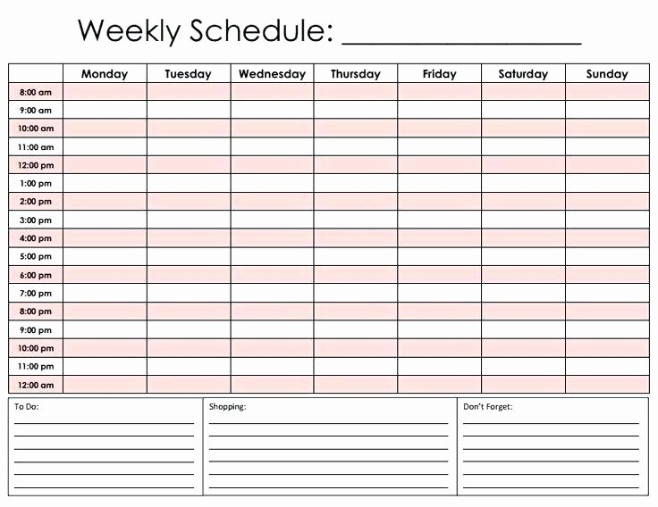 Free Printable Daily Hourly Schedule Template Car