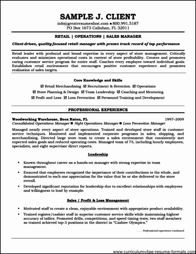 free professional resume templates 2016