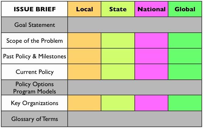 Free Program Public Policy Brief Template