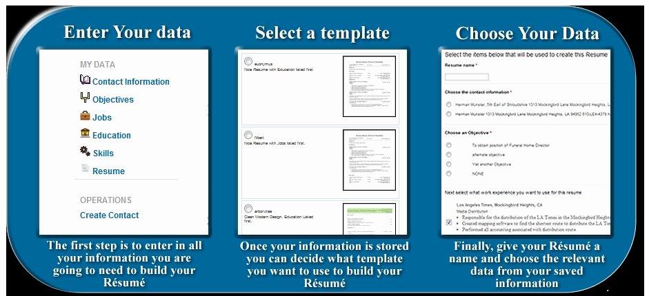 Free Resume Creator Line Best Resume Gallery