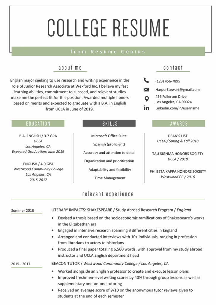 Free Resume Template Examples for Kids Pdf Tag 43