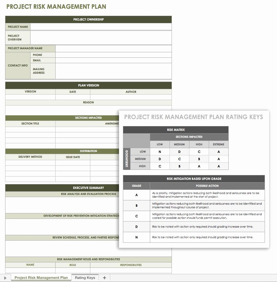 Free Risk Management Plan Templates