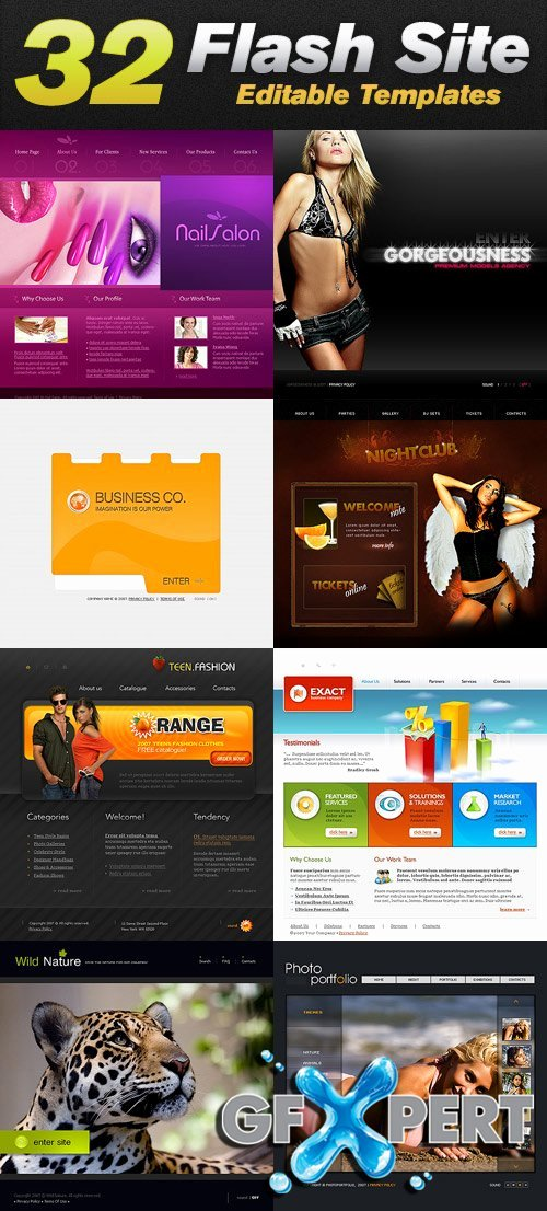 Free Templatemonster 32 Flash Website Editable Templates