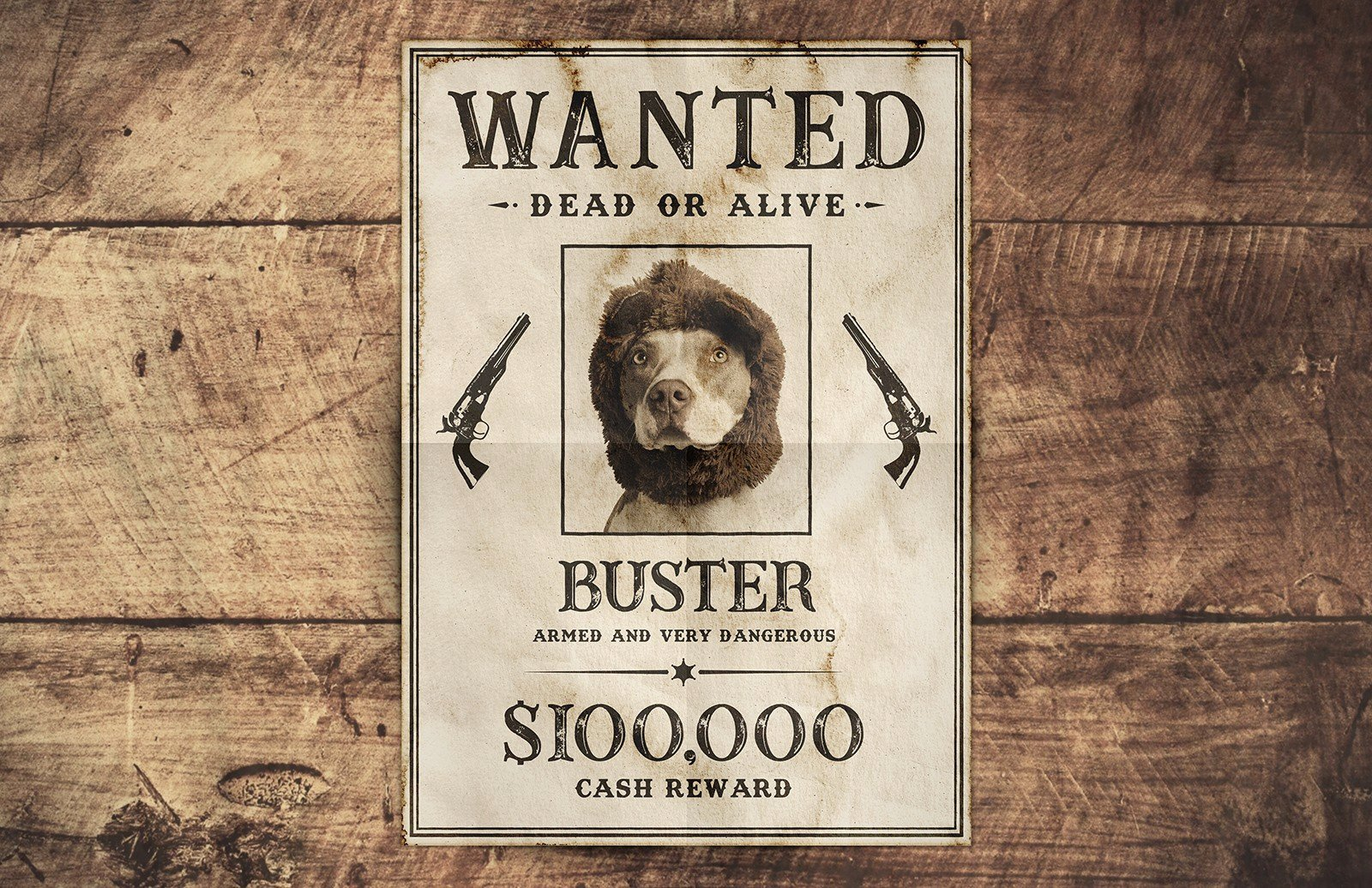 Free Wanted Sign Poster Template — Medialoot
