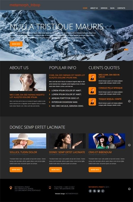Free Website Templates Beepmunk