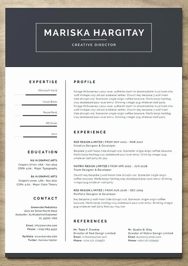 Free Word Resume Template 2015