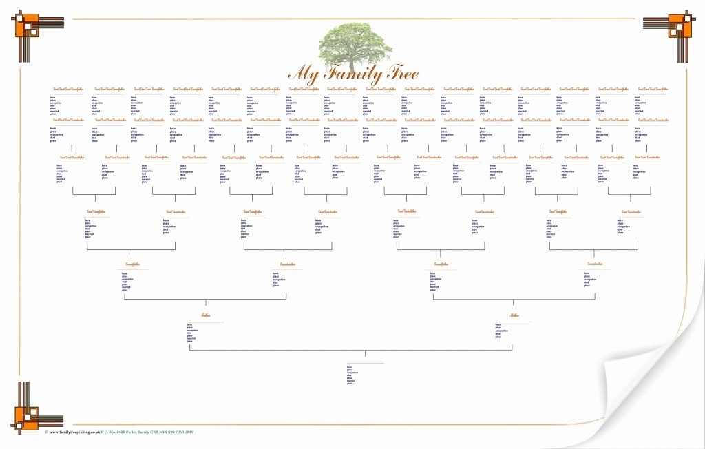 Freele Family Tree Template with Templates Uk