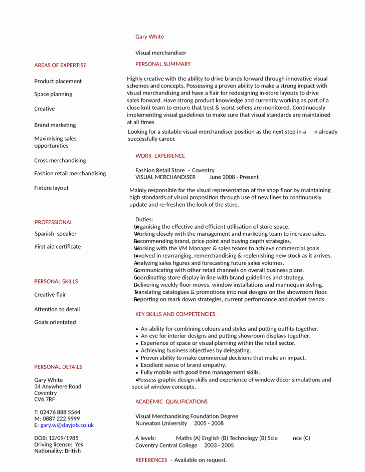 Functional Merchandiser Resume Template