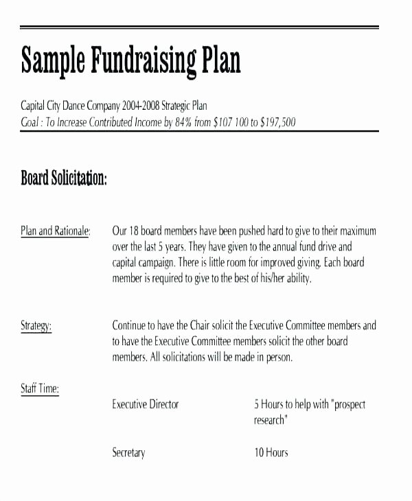 Fundraising event Planning Template Business Plan Free