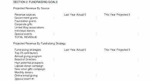 Fundraising Strategy Template Fundraising Plan Template