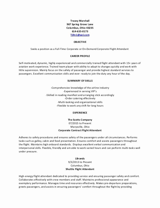 Generic Corporate Flight attendant Resume