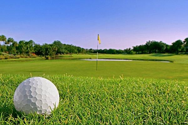 Golf Courses & Academies