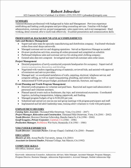 Good Resume Examples Professional Background and
