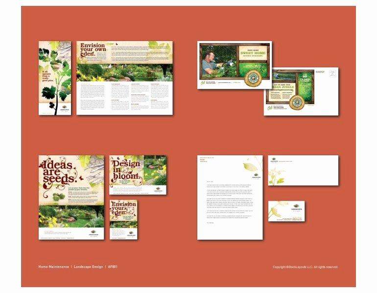 Graphic Design Pdf Portfolio Examples