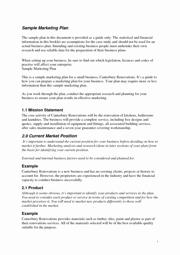 Graphy Business Plan Template Pdf Ariel assistance