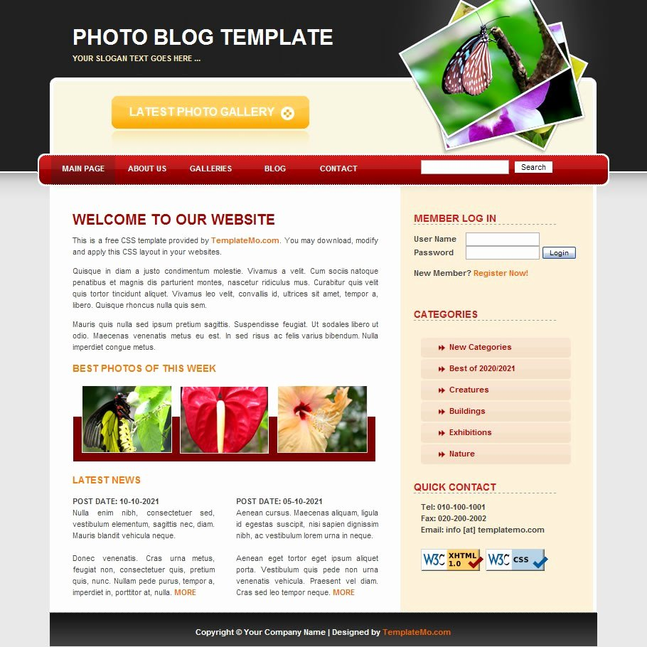 Graphy – Free HTML Website Templates