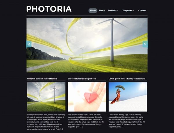 Graphy Website Templates – New Graphy themes