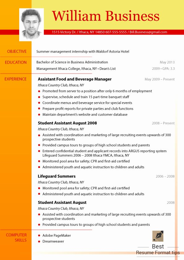 Great Cv formats 2016 You Should Try