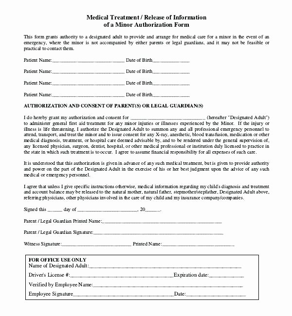 Guardianship Authorization Letter Temporary Guardianship
