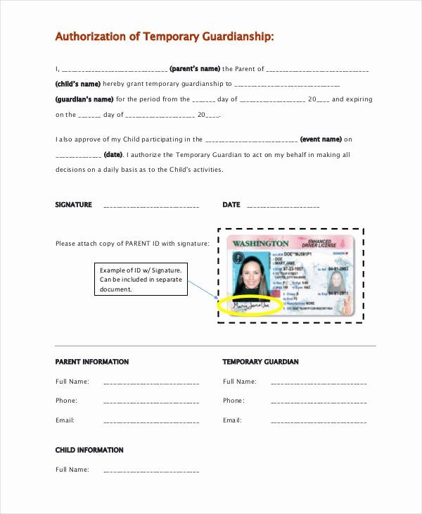 Guardianship forms 9 Free Pdf Word