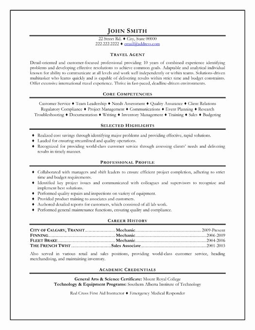 Here to Download This Travel Agent Resume Template