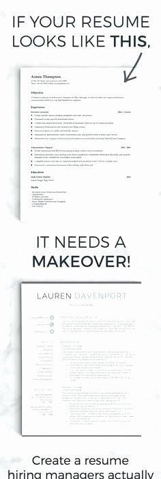 Hire A Resume Writer Delightful Ideas Hire Resume Writer