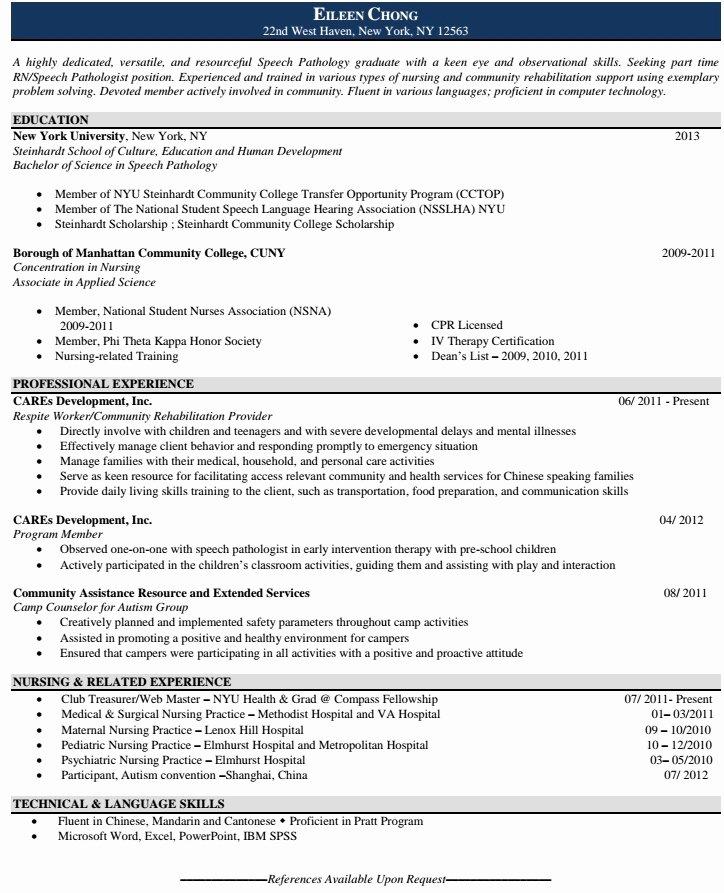 Houston Resume Service Best Resume Gallery