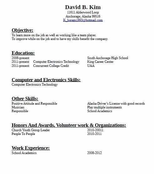 How to Write A Resume with No Job Experience What to Put