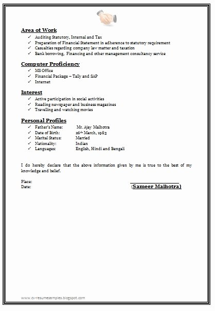 How to Write A Resume without Any Job Experience Samples
