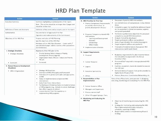 Hr Strategic Plan Template Human Resources Service