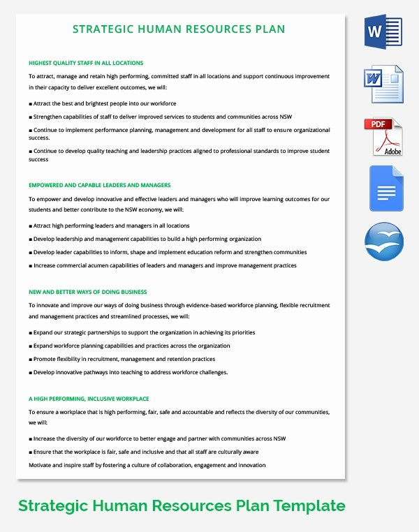Hr Strategy Template 39 Word Pdf Documents Download