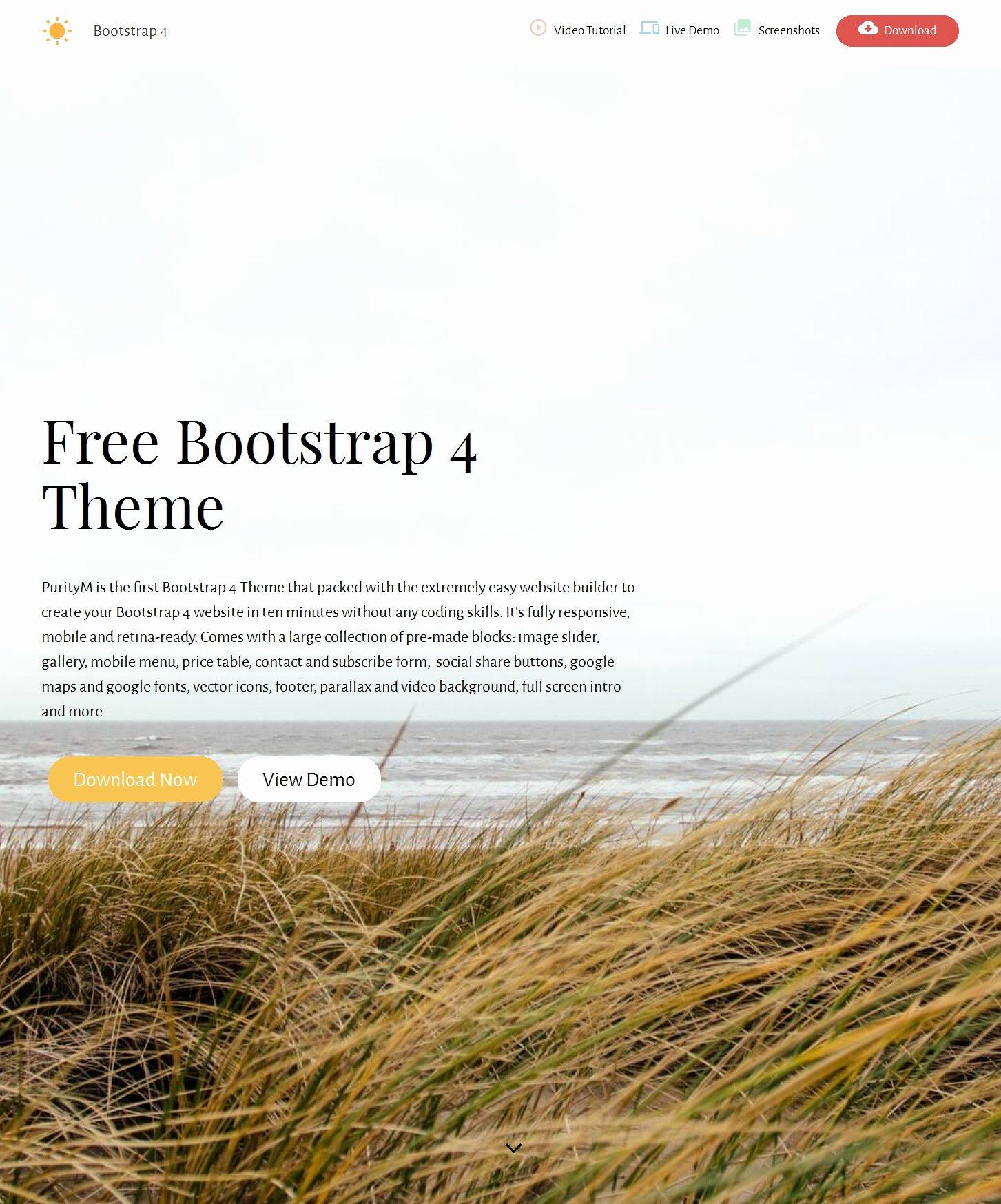 Html Bootstrap E Page theme