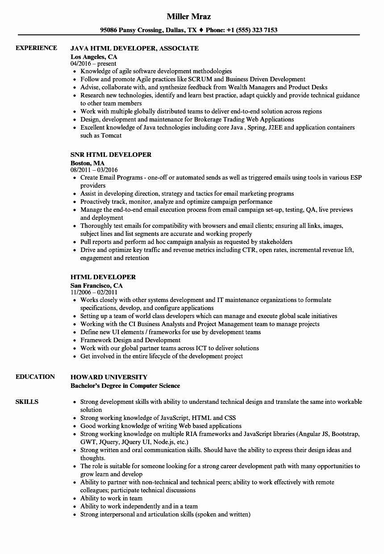 Html Developer Resume Samples