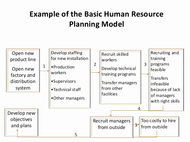 Human Resource Planning Recruitment and Selection