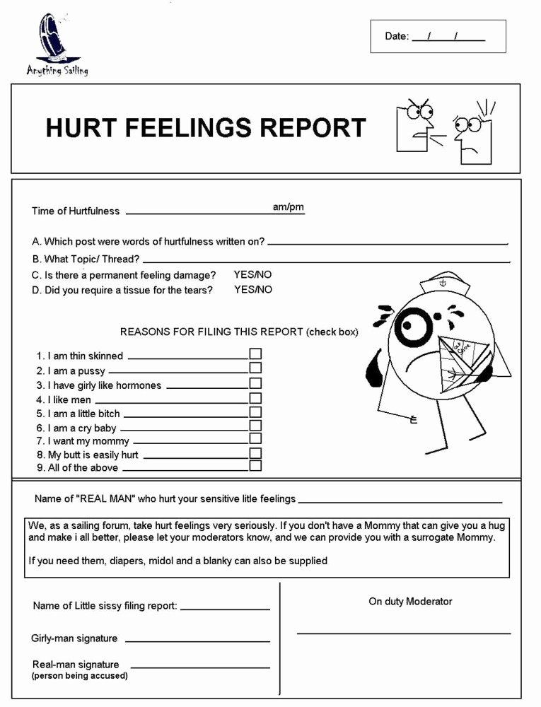 Hurt Feelings Report form Dolapgnetband
