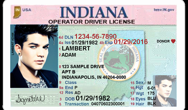 Indiana Driver S License Editable Psd Template Download